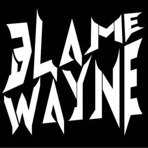 Blame Wayne