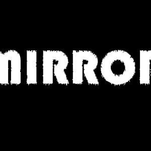 The Mirrorbox